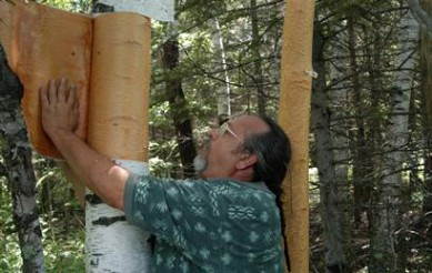 Investigate the Uncertain Future of Wiigwaasi-mitig (the paper birch tree)